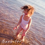 Barboter
